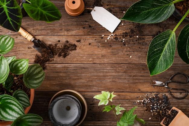 Drewniane tło roślinne z narzędziami ogrodniczymi do hobby