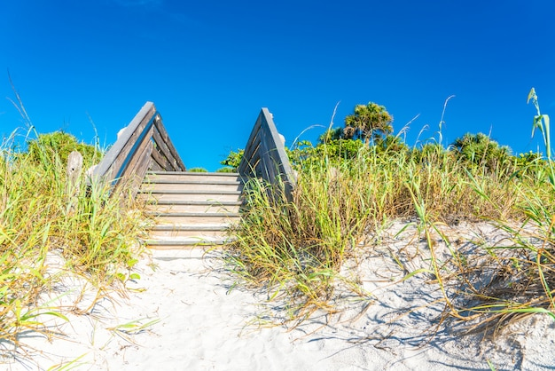 Drewniani schodki nad piasek diuną i trawą przy plażą w floryda usa