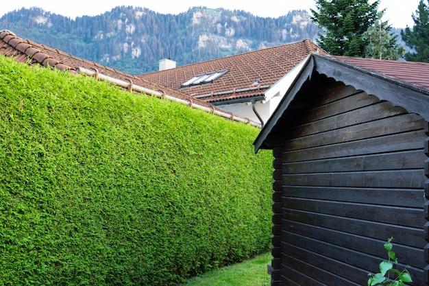 Drewniany brązowy dom na tle żywopłotu tuja i góry.