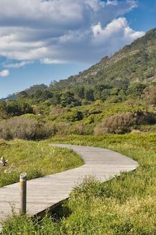 Drewniany chodnik między drzewami obok góry