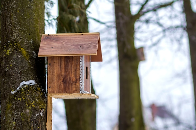 Drewniany dom dla ptaków na drzewie w lesie. miejsce do karmienia ptaków i szukania pożywienia w okresie zimowym. karmnik dla ptaków w parku.