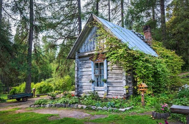 Drewniany dom w ogrodzie botanicznym na wyspach sołowieckich i północnym lesie