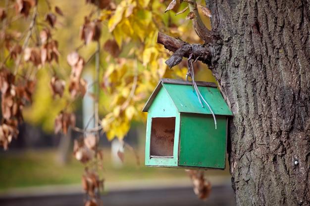 Drewniany domek dla ptaków w kolorze zielonym na drzewie