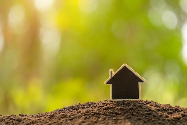 Drewniany domowy dorośnięcie w ziemi na zielonym naturze zamazuje tło. domowy biznes dorasta pojęcie