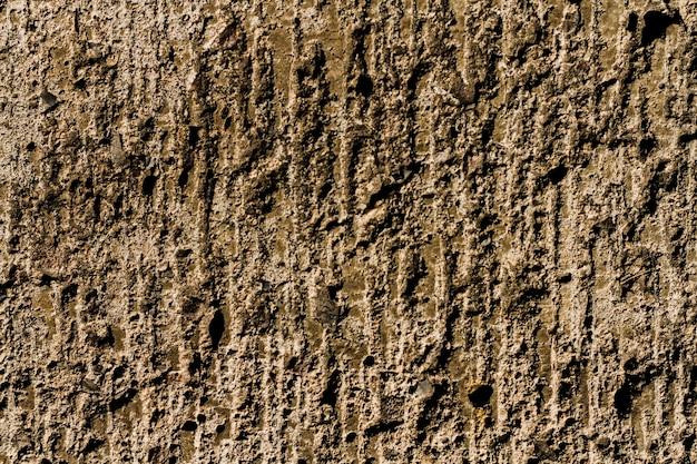 Drewniany drzewny tekstury tło z kopii przestrzenią