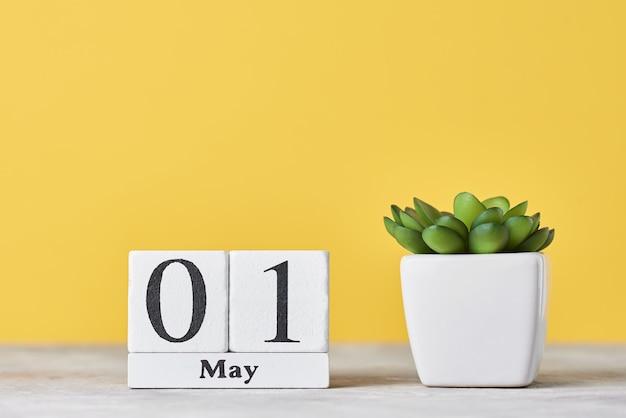 Drewniany kalendarz blokowy z datą 1 maja i soczystą rośliną w doniczce na żółtym tle.