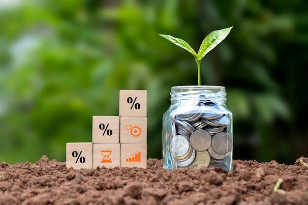 Drewniany klocek z rosnącym symbolem procentu i drzewem rosnącym na przezroczystej butelce, pojęciem finansowych stóp procentowych i kredytów inwestycyjnych.