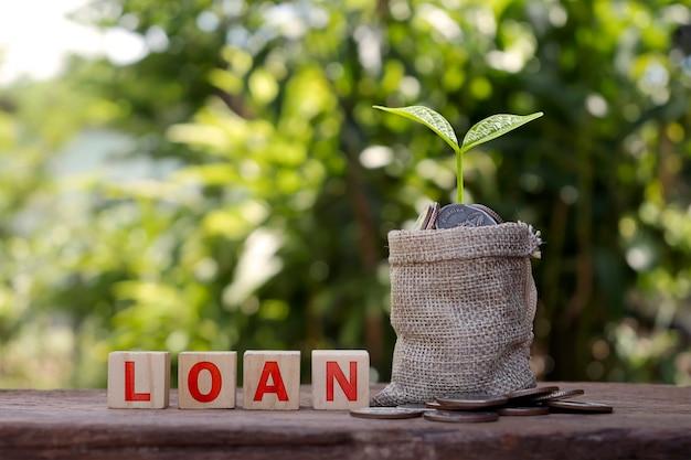 Drewniany klocek z tekstem pożyczki na drewnianej podłodze i uprawą roślin na torebce, pomysły na inwestycje w nieruchomości.
