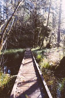 Drewniany mały wąski most w lesie nad małą rzeką