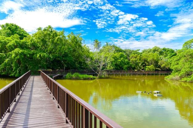 Drewniany most chodnik w parku sri nakhon khuean khan i ogród botaniczny