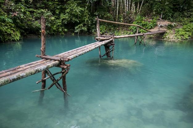 Drewniany most nad pięknym jeziorem w lesie w cebu na filipinach