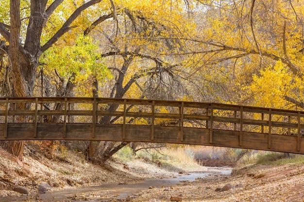 Drewniany most w jesiennym parku