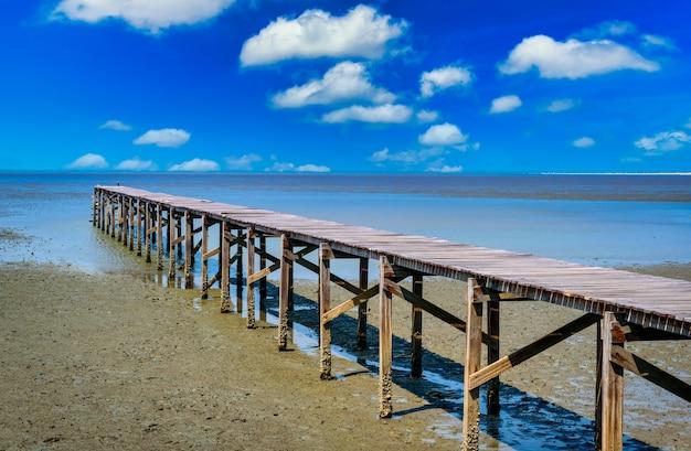 Drewniany most w namorzynowym lesie na tle błękitnego nieba.