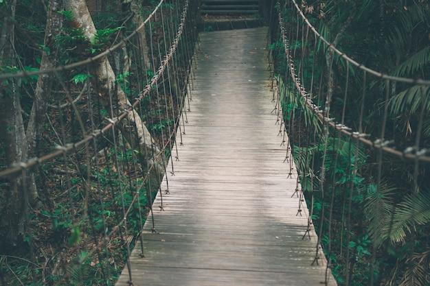 Drewniany most wiszący z procą w lesie