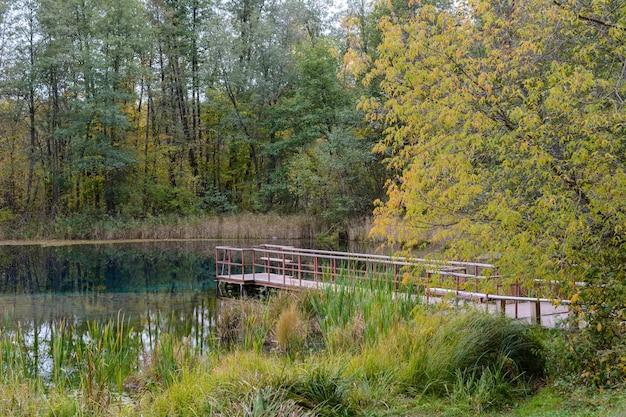 Drewniany most wyposażony w stopnie do pływania w lodowatej wodzie błękitnego jeziora w kazaniu. trzciny, trawa, drzewa i turkusowa woda uzdrawiającego jeziora. jesienny krajobraz.