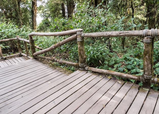 Drewniany most z drewnianą poręczą w ścieżce dydaktycznej.
