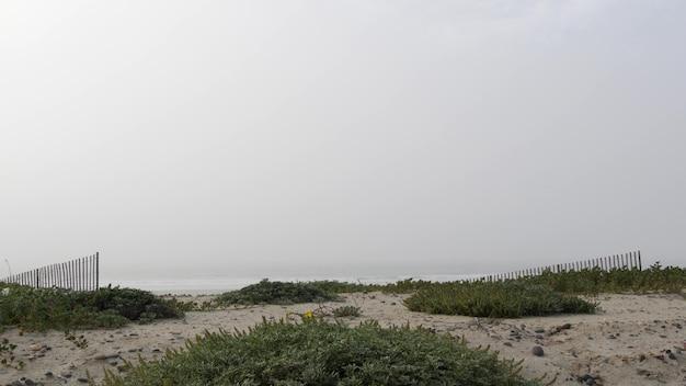 Drewniany płot, piaszczysta, mglista plaża, kalifornia usa. wybrzeże oceanu, mglista pogoda na brzegu morza