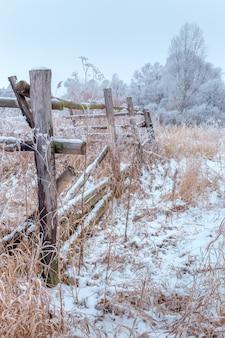 Drewniany płot w lesie zimą.