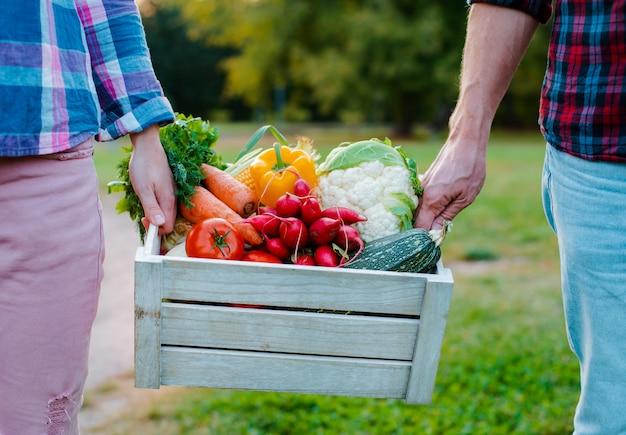 Drewniany pudełko z rolnymi warzywami w rękach mężczyzna i kobiet, zakończenie.