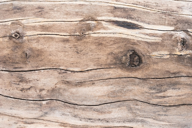 Drewniany tekstury tło z kopii przestrzenią