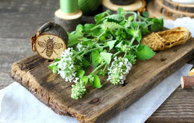 Drewno z zielonej mięty