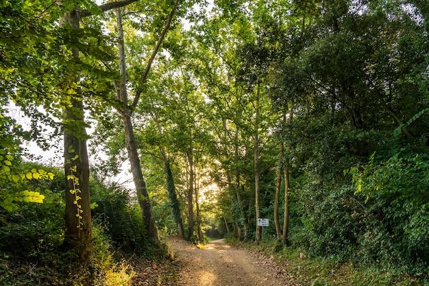 """Droga do """"camă dels ăngels"""" o wschodzie słońca."""