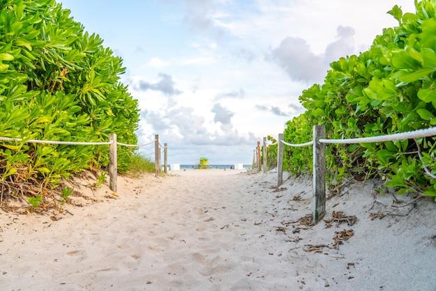 Droga do plaży w miami na florydzie z oceanem