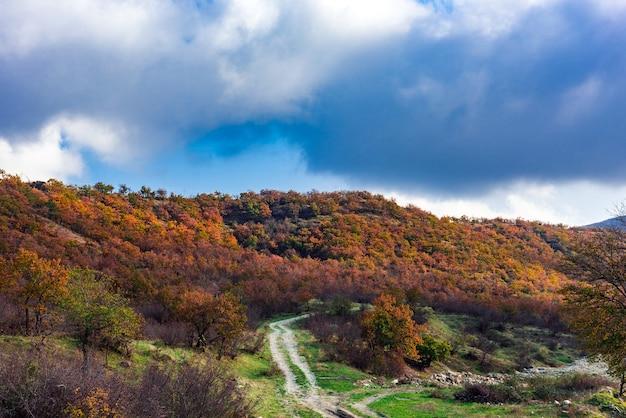 Droga gruntowa między jesiennymi żółtymi drzewami na zboczu góry