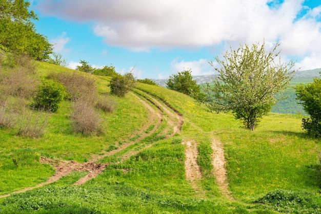 Droga gruntowa na zielonym wzgórzu