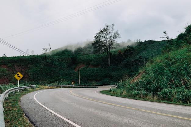 Droga i podróż w deszczu zielony las