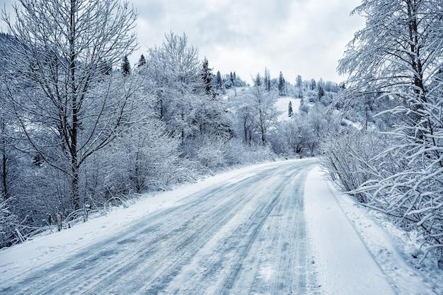Droga jest pośród ośnieżonych drzew w górach