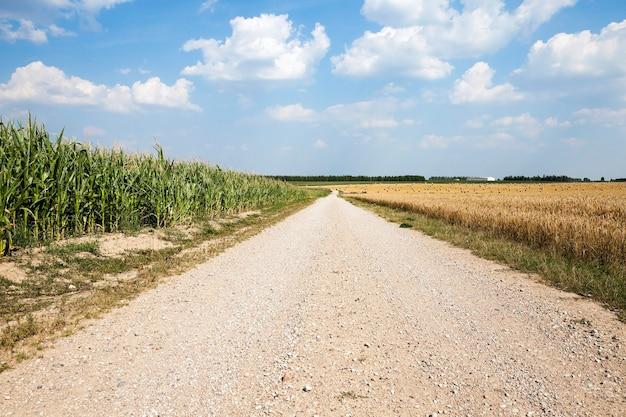 Droga krajowa utwardzona, przebiegająca przez pole uprawne