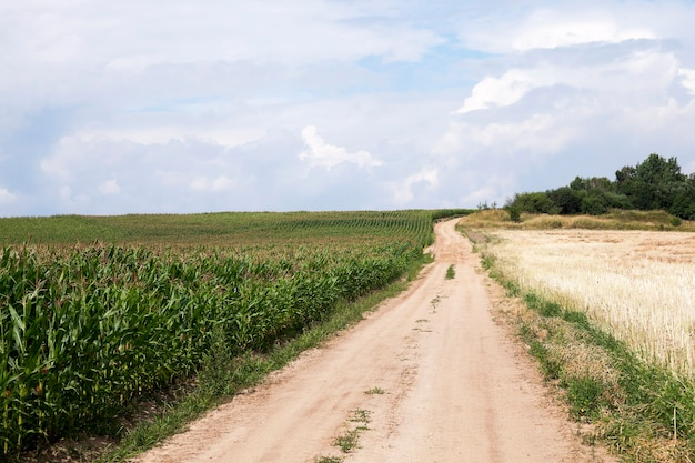 Droga krajowa utwardzona, przechodząca przez pole uprawne
