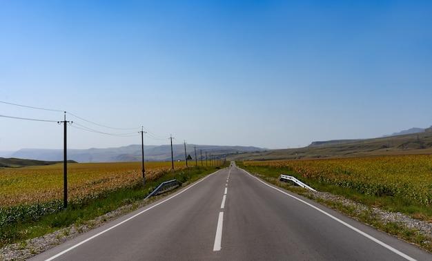Droga pośrodku pola kukurydzy