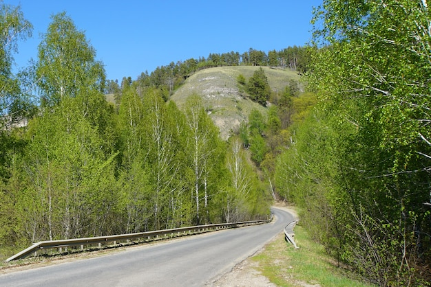 Droga prowadząca do lasu. park narodowy. rezerwować.