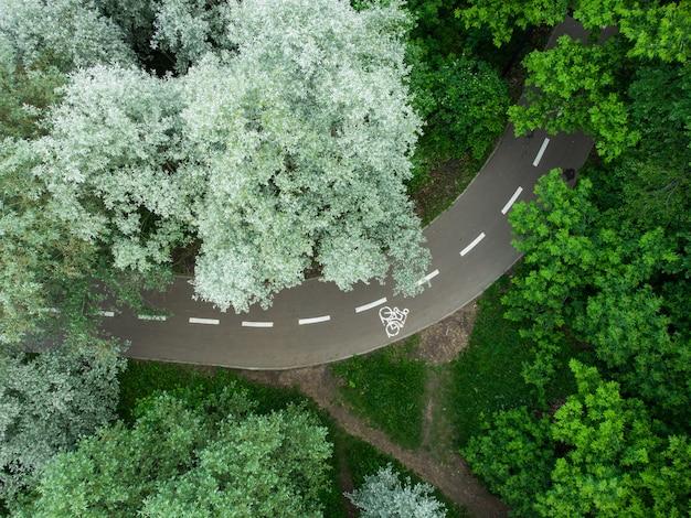 Droga przez letni zielony las, widok z lotu ptaka