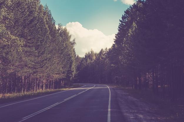 Droga przez zielony głęboki las w rosji wokół zielonych sosen i błękitnego nieba słoneczny dzień i jesień