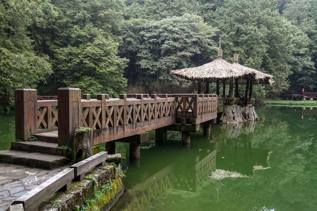 Droga spacerowa idzie do pawilonu w parku narodowym alishan na tajwanie.