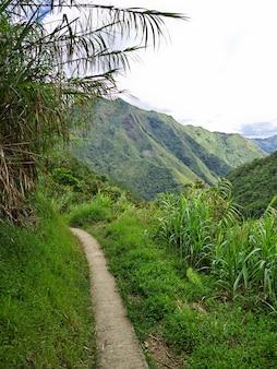 Droga w górach w banaue na filipinach