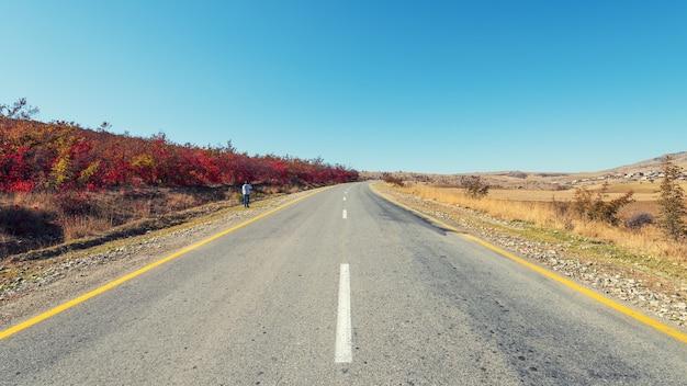 Droga w górach wśród jesiennych drzew