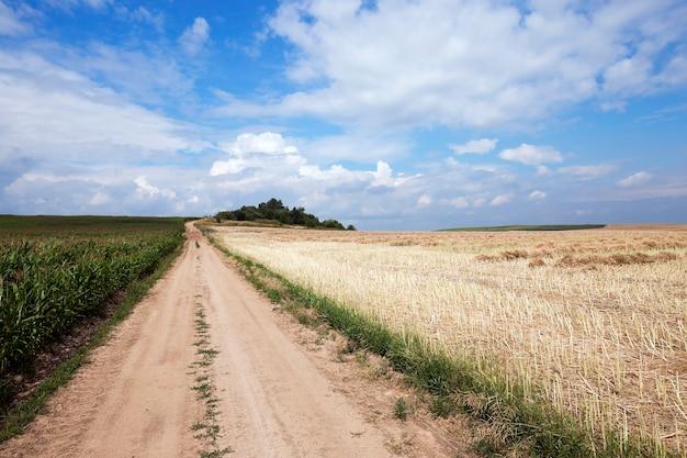 Droga w polu - droga wiejska utwardzona, przechodząca przez pole uprawne