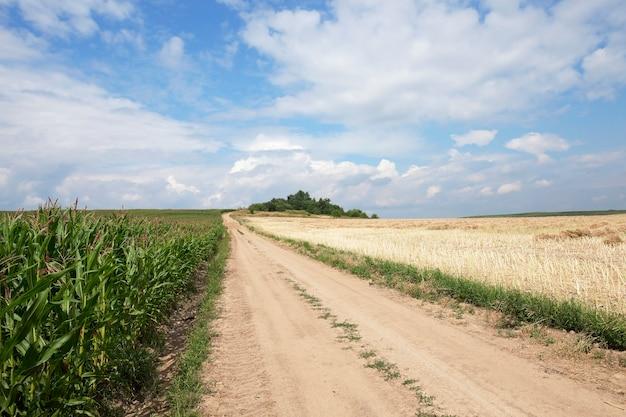 Droga w polu utwardzona wiejską drogą, przechodząca przez pole uprawne
