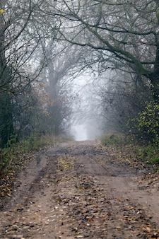 Droga w sezonie zimowym