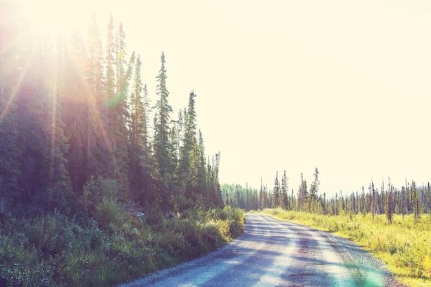 Droga w słoneczny dzień w górach alaski