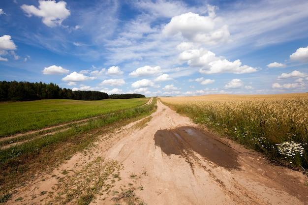 Droga wiejska - mała nieutwardzona droga na terenach wiejskich