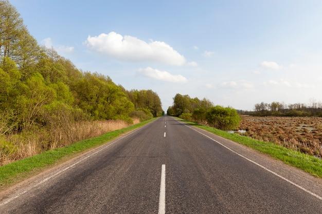 Droga wzdłuż drzew