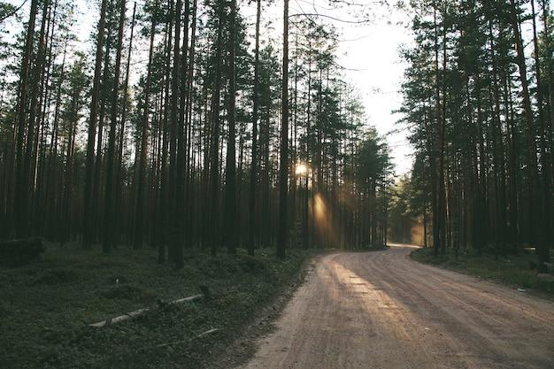 Droga z jasnymi promieniami zachodzącego słońca.