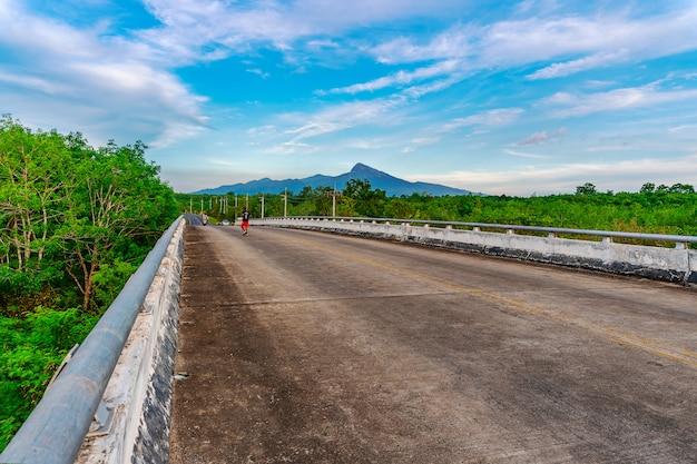 Droga z mostem i drzewną naturą w świetle słonecznym