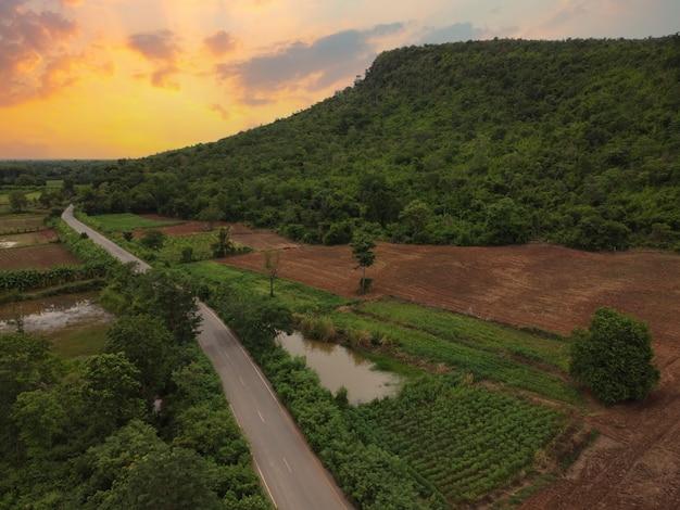 Drogi wiejskie, pola uprawne i zielone lasy, zdjęcia lotnicze z drona