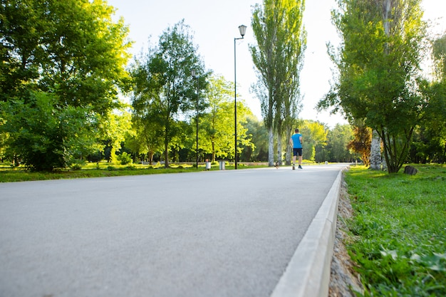 Drogowy sposób w parku miejskim z drzewami i trawą